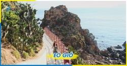 Tour Tham Quan  Quy Nhơn Phú Yên 3 Ngày 2 Đêm