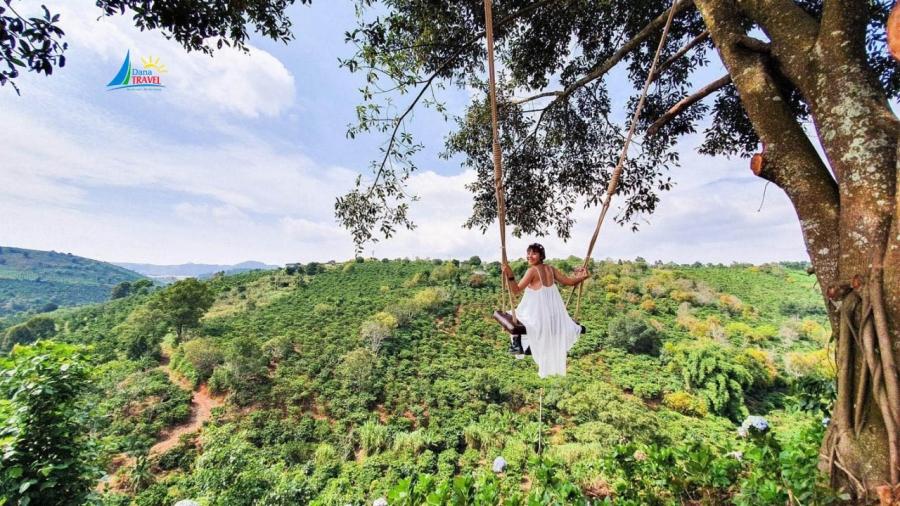 Tour Săn Mây Đón Bình Minh tại Đà Lạt giá rẻ khởi hành hằng ngày