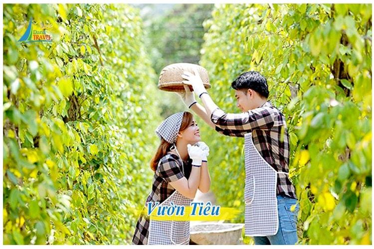 Tour Phú Quốc 3 Ngày 2 Đêm khởi hành hằng ngày từ Sài Gòn