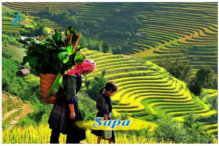 Tour du lịch Sapa 2 ngày 1 đêm tham quan Cát Cát - Hàm Rồng khởi hành từ Hà Nội